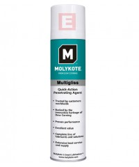 Molykote Multigliss Spray